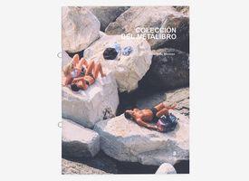 Colección del Metalibro 8 - Constanza Miranda