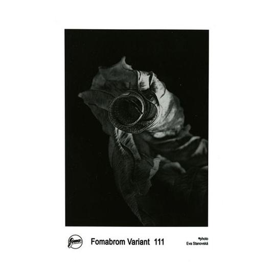 FOMABROM VAR. 111 18X24 CM/10 hojas