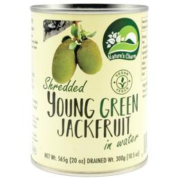 Fruta Jaca Verde Desmenuzada en Agua 565 grs