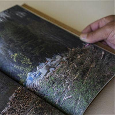 Estar ahí: prácticas y formas de subsistencia en la Ruta de la madera