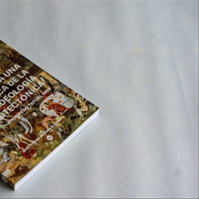 Arquitectura, crisis, crítica radical