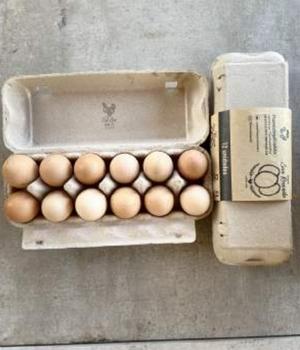 Huevos Extra Color (L) 12 Unidades