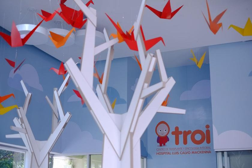 Instalación para TROI