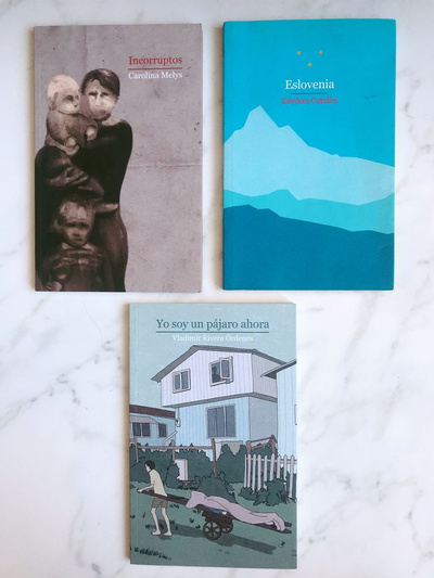 Selección literatura chilena