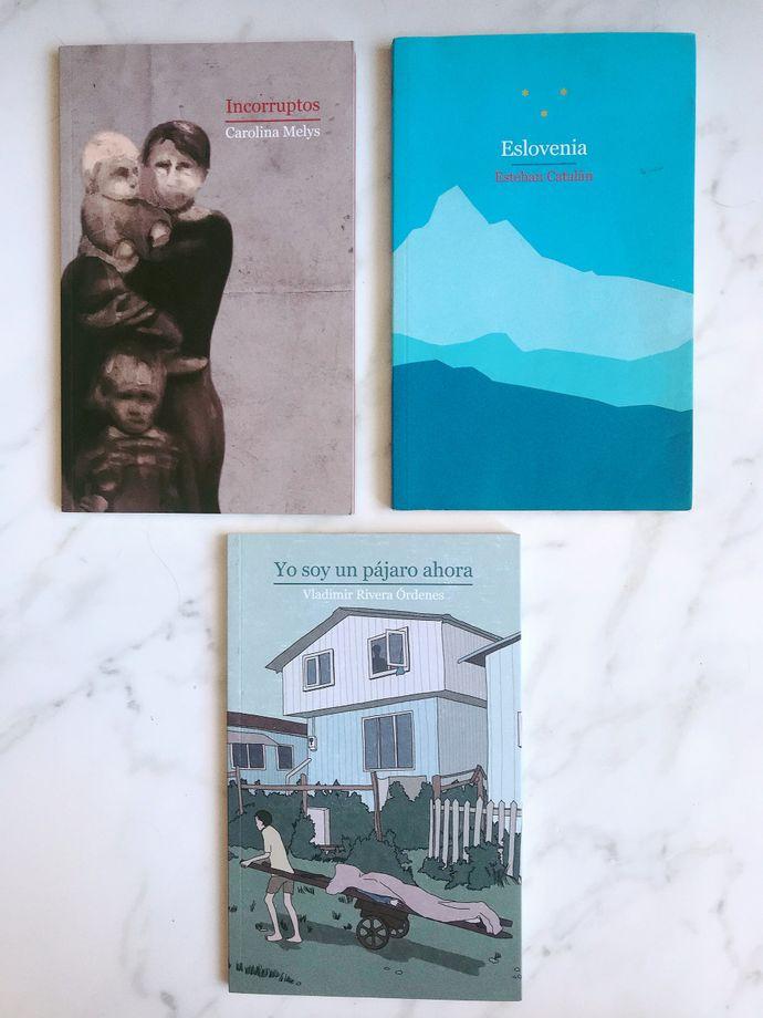 Selección literatura chilena - selección literatura chilena.jpeg
