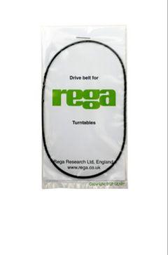 Correa - Standard Belt Rega