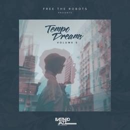 Tempo Dreams Vol. 5 (2XLP)