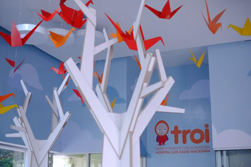 Installation for Troi