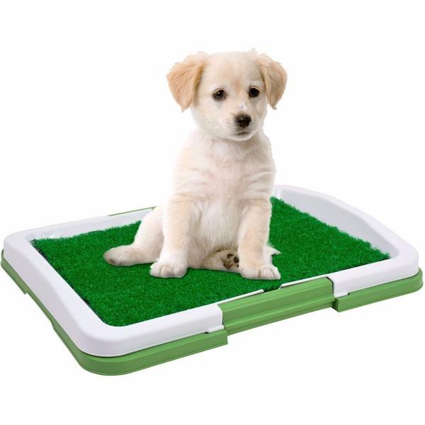 Baño para mascotas