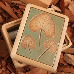 Caja Botánica Gress