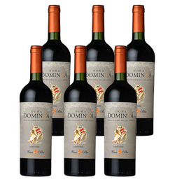 Doña Dominga G.Res. Carm. Botella 750cc x6