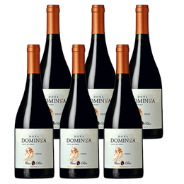 Vino Doña Dominga Gran Reserva Syrah Botella 750cc x6