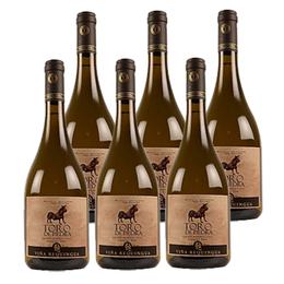 Vino Toro de Piedra Sauvignon Blanc Botella 750cc x6