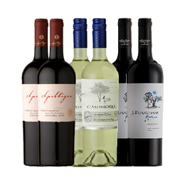 Pack Vinos Reserva 2x Apaltagua + 2x Casas del Bosque + 2x J. Bouchon Botella 750cc