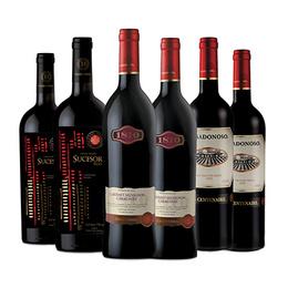 Vino Casa Donoso Pack 6 Mezcla Premium