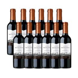 Vino Castillo de Molina Reserva Carmenere Botella 375cc x12