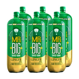 Mr. Big Ginger Ale Botella 2Lts. x6