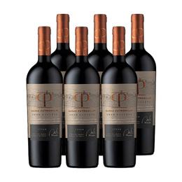 Vino Casas Patronales Gran Reserva Syrah Botella 750cc x6
