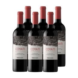 Vino Coyam Orgánico Botella 750cc x6