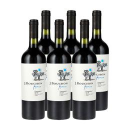 J. Bouchon Reserva Carmenere/Syrah Botella 750cc x6