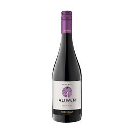 Vino Aliwen Pinot Noir Botella 750cc