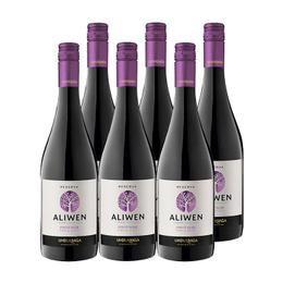 Vino Aliwen Pinot Noir Botella 750cc x6