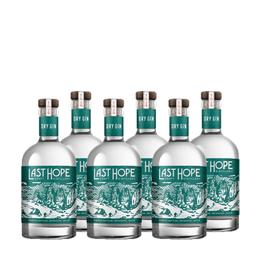 Gin Last Hope Dry Botella 750cc x6