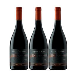 Vino Kankana del Elqui Syrah Botella 750cc x3