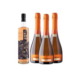 Pack Momentum Licor Flor de Sauco y Frutos Tropicales Botella 750cc + 3x Espumante Undurraga Brut Botella 750cc