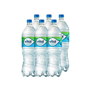 Agua Mineral Vital Con Gas Botella 1.6 Lts x6