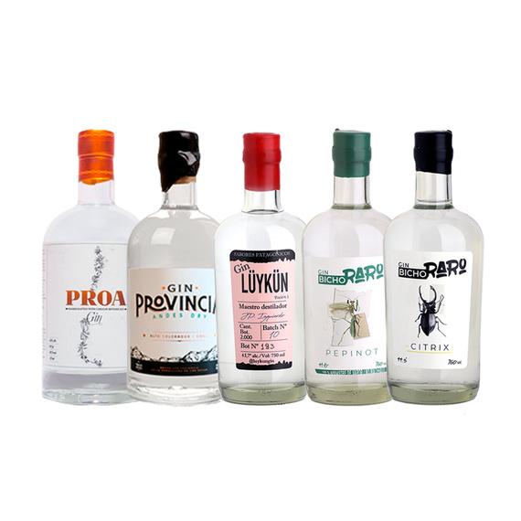 Proa + Provincia + Lüykün + Bicho Raro Pepinot + Citrix Botella 750cc