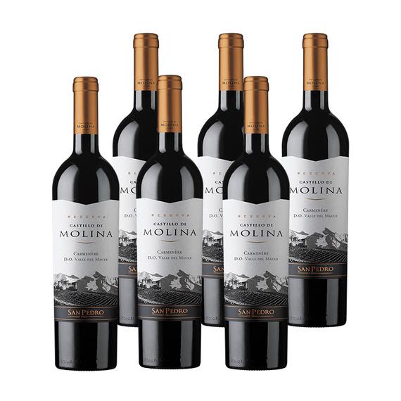 Vino Castillo de Molina Reserva Carmenere Botella 750cc x6