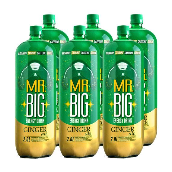 Mr. Big Ginger Ale Botella 2Lts. x6