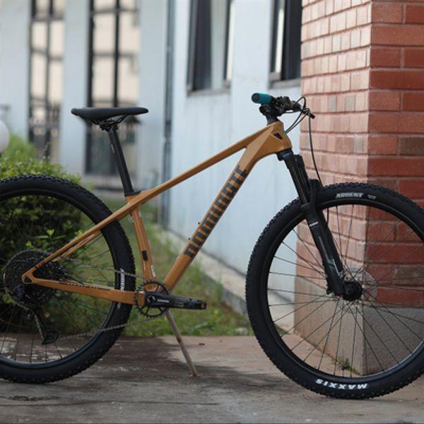 Bicicleta Dominate CXC  Carbon Gold