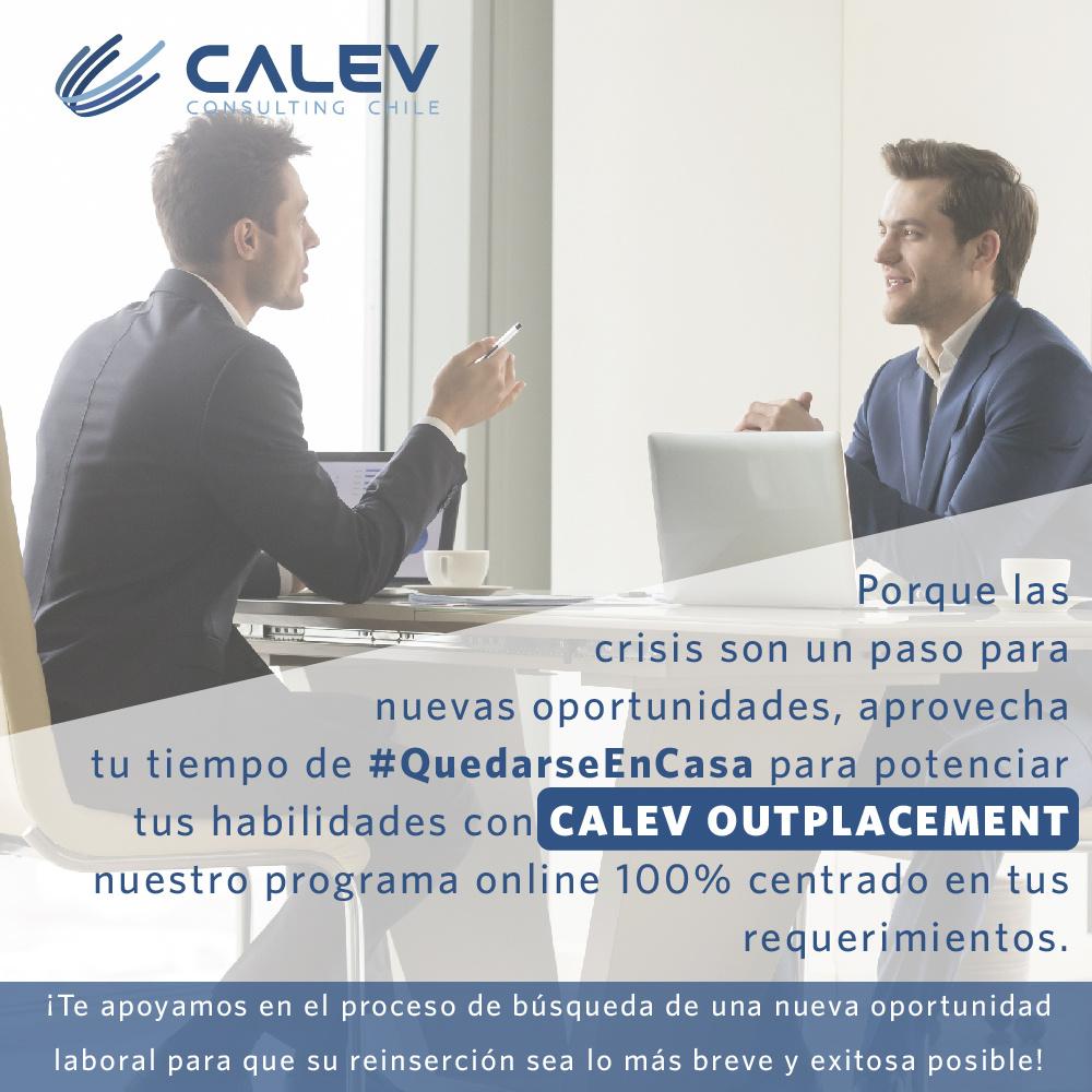Consultora CALEV