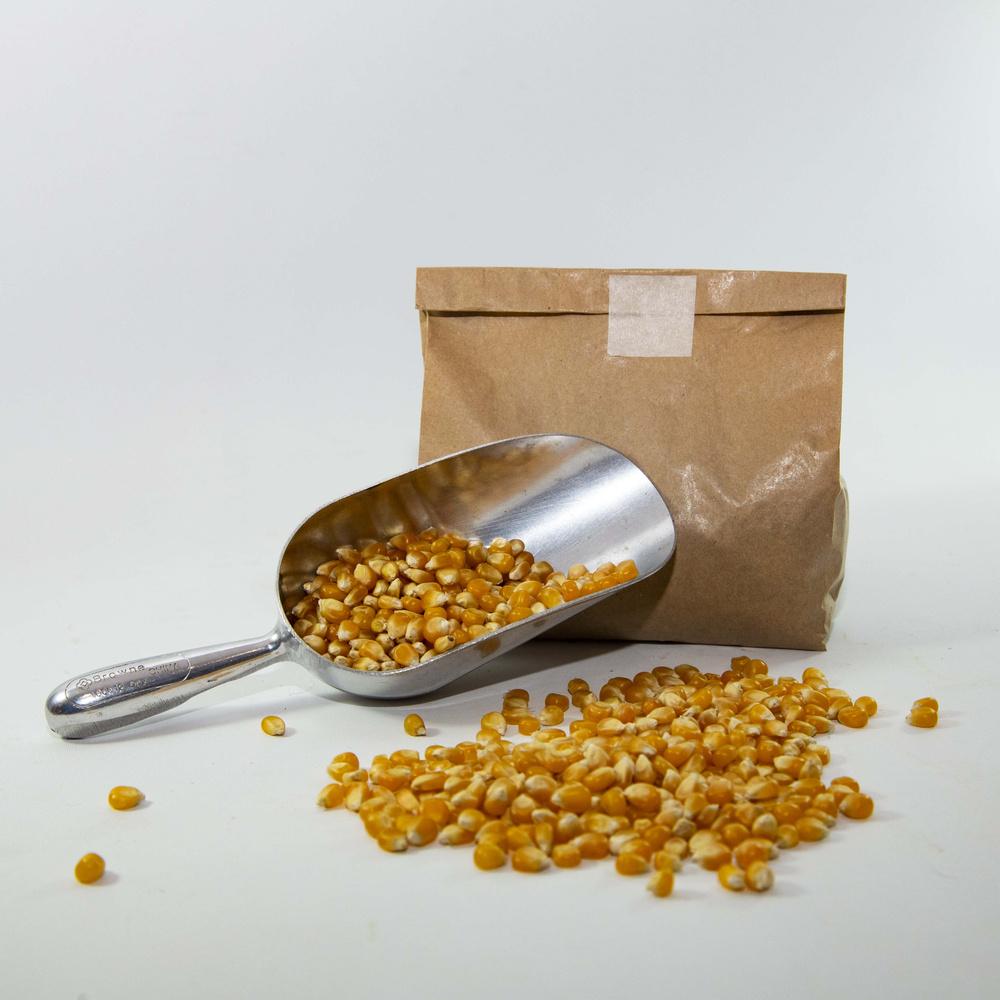 Maiz curagua