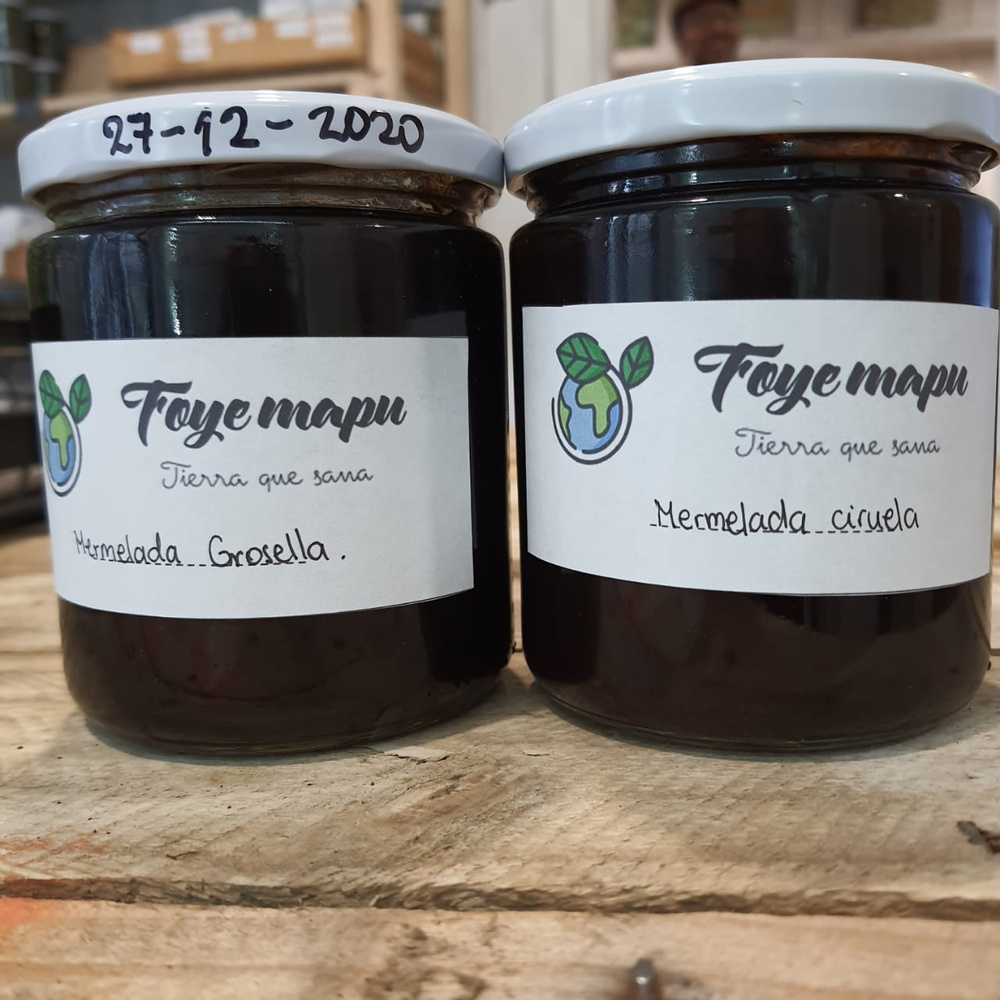 Mermelada Grosella Agroeco 450 g