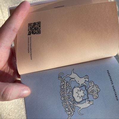 Pasaporte gatuno