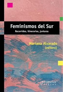 FEMINISMOS DEL SUR. RECORRIDOS, ITINERARIOS Y JUNTURAS