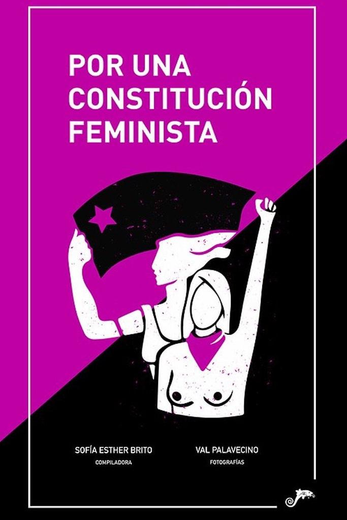 POR UNA CONSTITUCION FEMINISTA - porunaconstitucion9994.jpg